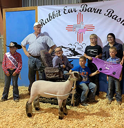 Allen Show Lambs - Contact Us For Your Next Champion!
